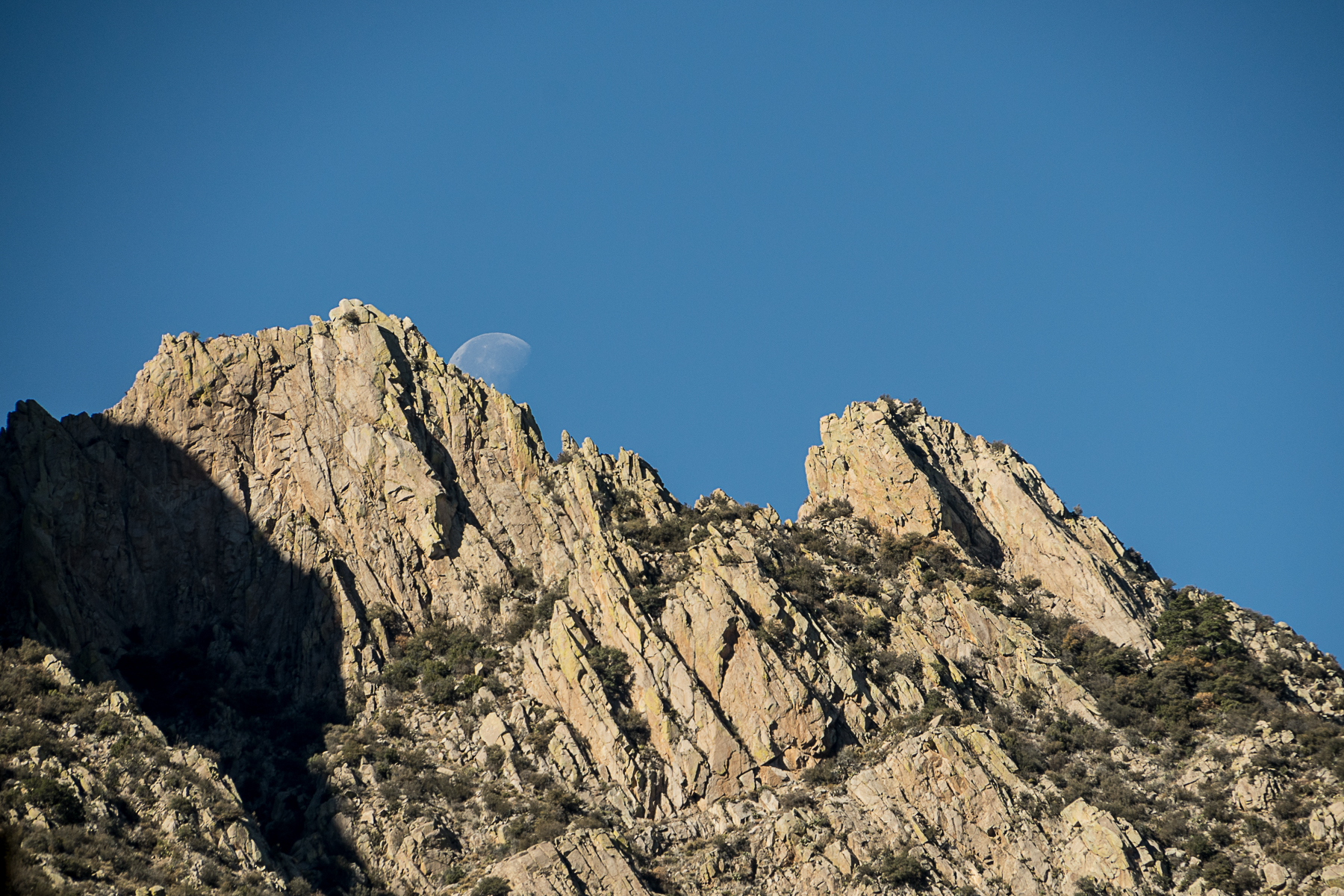 Organ Mountains, Desert Peaks, BLM, New Mexico, desert, agave, yucca, National Monument